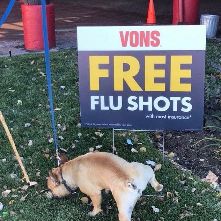 Flu Shot Diaries