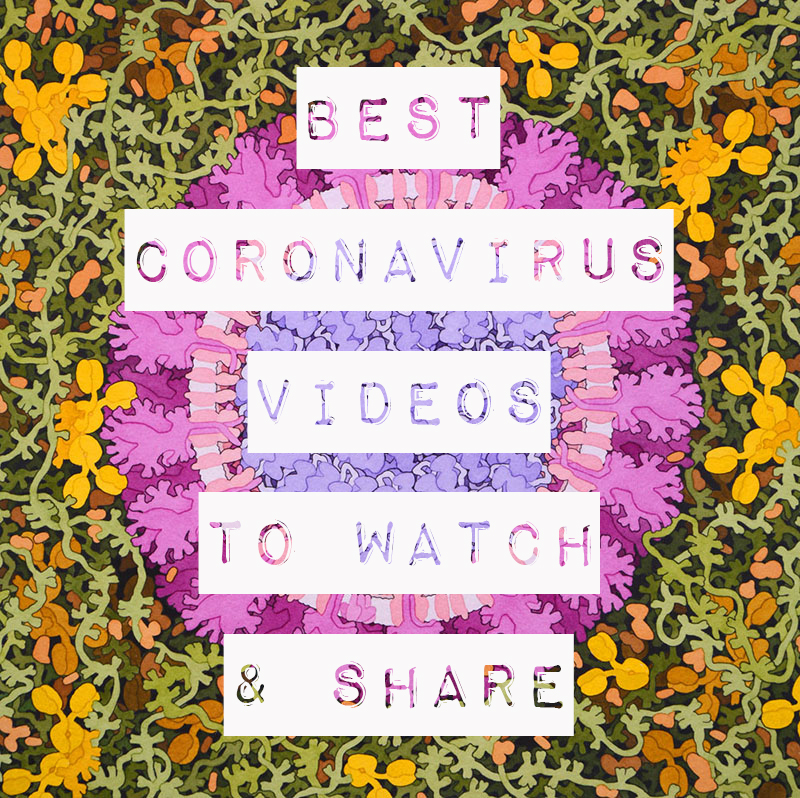 Best Videos on Covid-19 No One Wants You To See